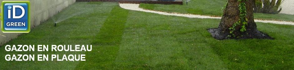 gazon en plaque narbonne